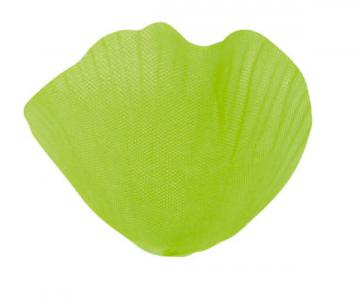 Sachet de 100 pétales avec feuilles couleur vert anis