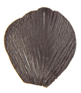 Sachet de 100 pétales avec feuilles couleur noir